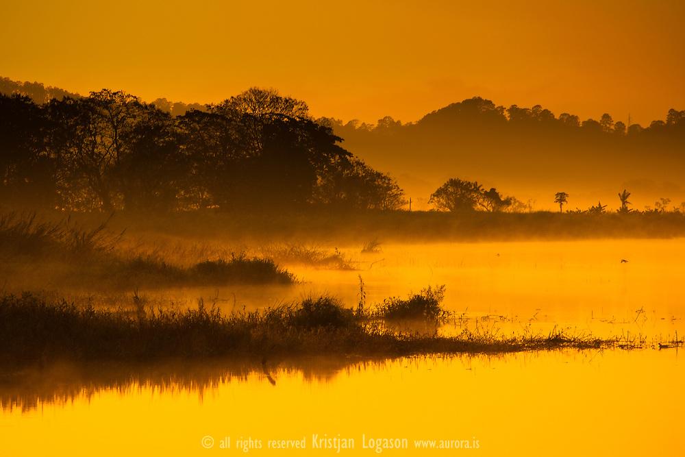 Morning glow on Lake Yojoa, Honduras