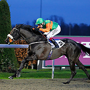 Kempton 8th January