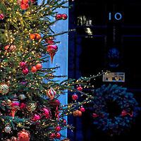 Christmas Tree at n10 Downing Street