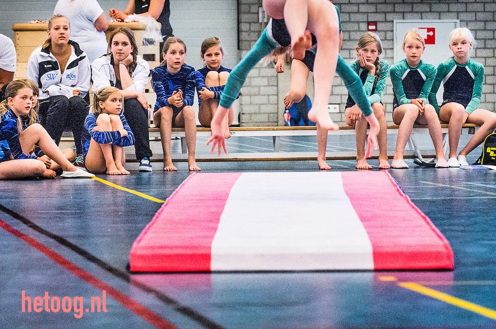 nederland, enschede, 15juni2013 enschedese gymnastiek kampioenschappen in de diekmanhal.