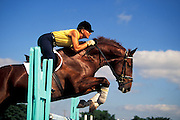 Female equestrian practicing for a show jumping event or competition.