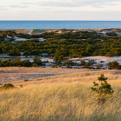 View from the Provinceland Dunes in Cape Cod National Seashore in Provincetown, Massachusetts.