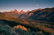 Moonrise at sunset over the Grand Tetons, from Targhee NF, on the west slope of the Teton Range, WYOMING