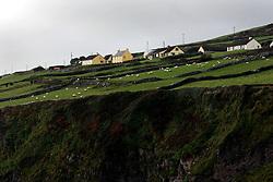 IRELAND KERRY DINGLE 3NOV05 - Coastal landscape near Dunbeg Fort on the Dingle Peninsula, Irelands most westerly county...jre/Photo by Jiri Rezac..© Jiri Rezac 2005..Contact: +44 (0) 7050 110 417.Mobile: +44 (0) 7801 337 683.Office: +44 (0) 20 8968 9635..Email: jiri@jirirezac.com.Web: www.jirirezac.com..© All images Jiri Rezac 2005 - All rights reserved.