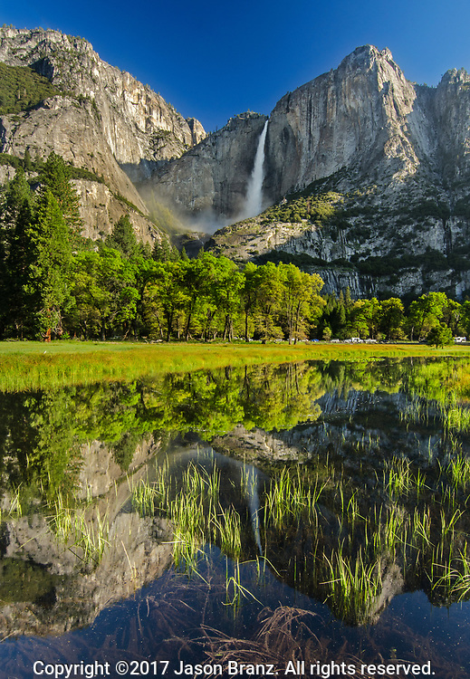 Upper Yosemite Falls reflected in a snowmelt pool in a meadow, Yosemite National Park, California.