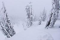 Storm at Kirkwood ski resort near Lake Tahoe, CA.