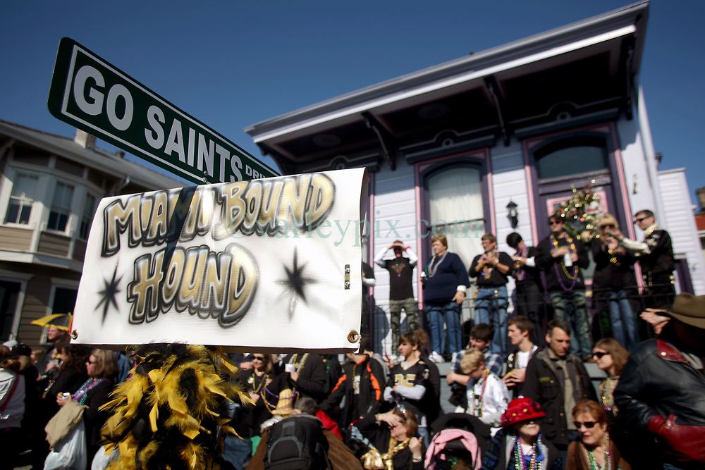 07 February 2010. New Orleans, Louisiana, USA. <br /> The 'Barkus' parade sets off with Saints mania clearly the flavour of the day for New Orleans' only dog Mardi Gras parade. Saints fans gather in the French Quarter in anticipation of the big game in Miami later in the day as the home team goes head to head with the Indianapolis Colts for Superbowl 44. <br /> Photo &copy;; Charlie Varley/varleypix.com