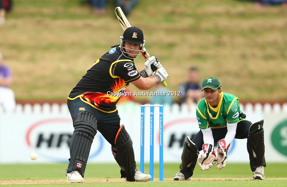 Jesse Ryder in action during the 2012/2013 HRV Cup Twenty20 session. Wellington Firebirds v Central Stags at the Basin Reserve, Wellington, New Zealand on Wednesday 26 December 2012. Photo: Justin Arthur / photosport.co.nz