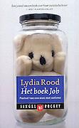 Lydia Rood Het boek job