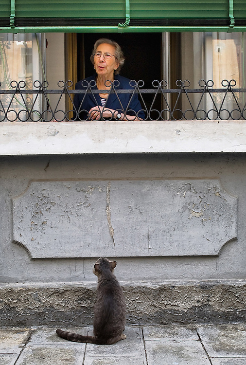 VENICE, ITALY - AUGUST 27:  A stray cat looks at a ladywhile waiting to be fed in the Cannaregio area on August 27, 2011 in Venice, Italy. Dingo is the Anglo-Venetian association part of the AISPA,  founded in 1965 by Helen Saunders and Elena Scapabolla and is devoted to the welfare of venetian stray cats. Cats in Venice