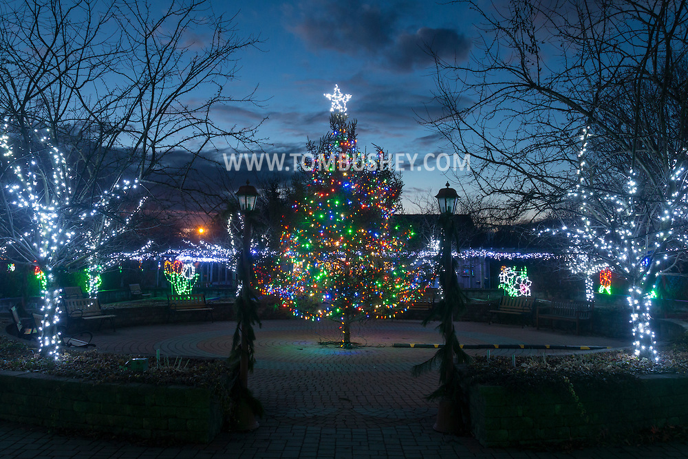 """Hamptonburgh, New York - The eighth annual """"Holiday Lights in Bloom"""" display at the Orange County Arboretum on Dec. 10, 2016."""