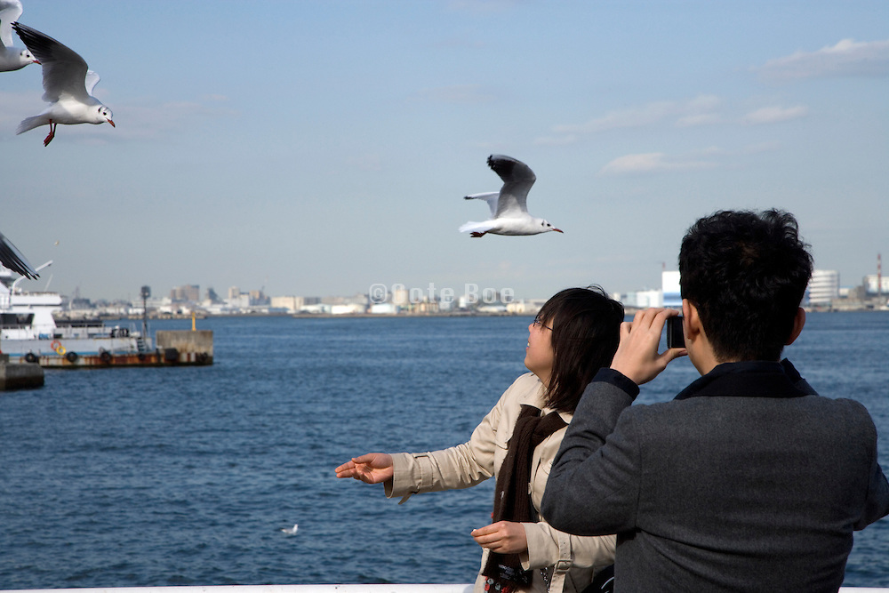 young man taking picture of his girlfriend feeding seagulls