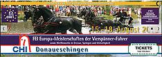 Donaueschingen - CHI mit EM Gespannfahren 2019