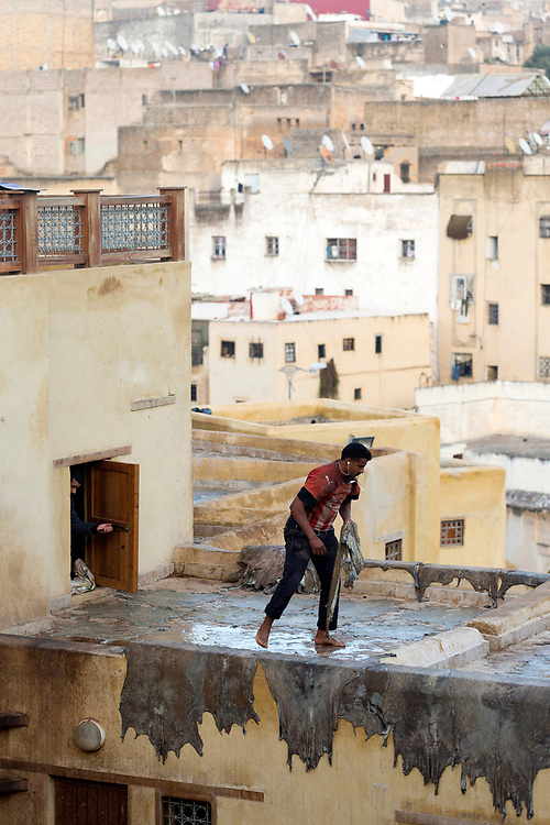 FEZ, MOROCCO - 1st DECEMBER 2016 - Worker places animal hides out to dry on rooftops at the Chouwara Tannery, Fez Medina, Middle Atlas Mountains, Morocco.