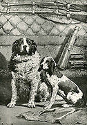 Dogs Diane and Satellite inside the space capsule on the journey to the Moon. From 'Autour de la Lune', Paris, 1885,  bu Jules Verne.