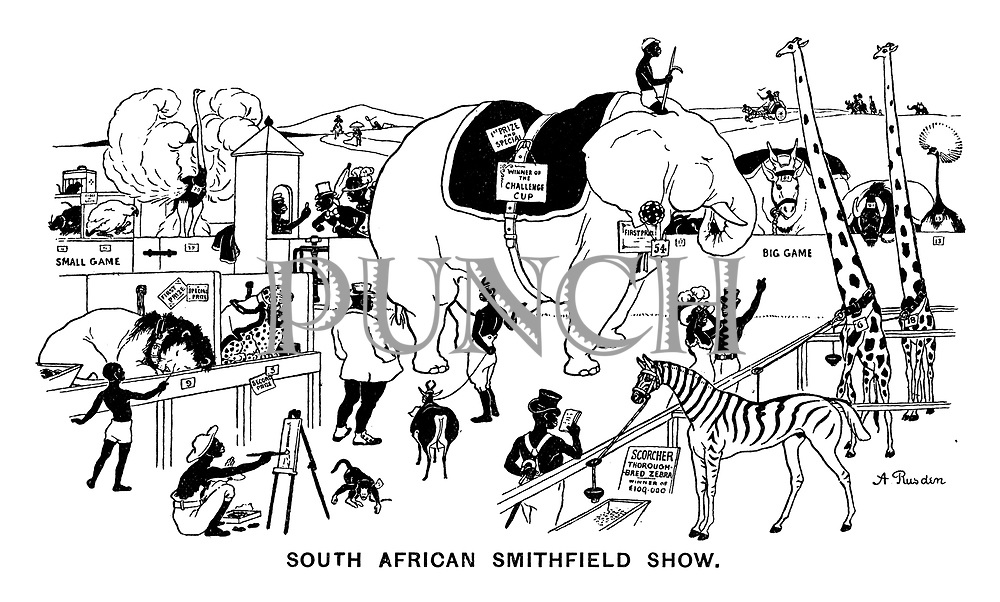 South African Smithfield Show.