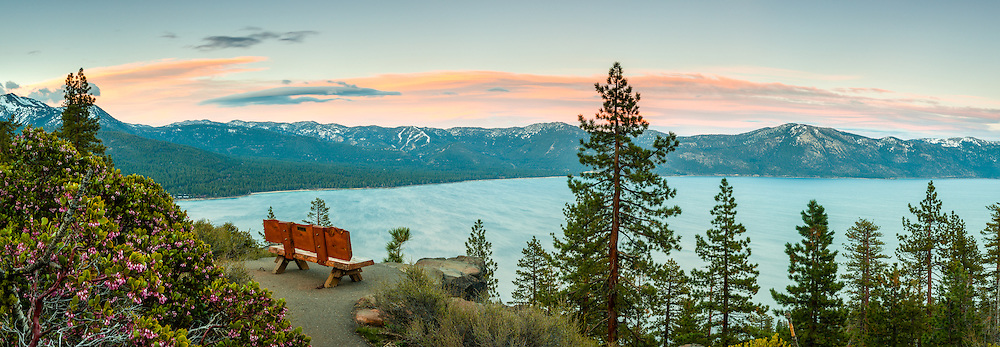 """Sunset at Lake Tahoe 38"" - These Manzanita flowers and bench were photographed at sunset near the Stateline fire lookout in Crystal Bay, Lake Tahoe."