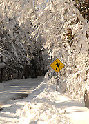 Images from March 2012 snow storn in northern Michigan.