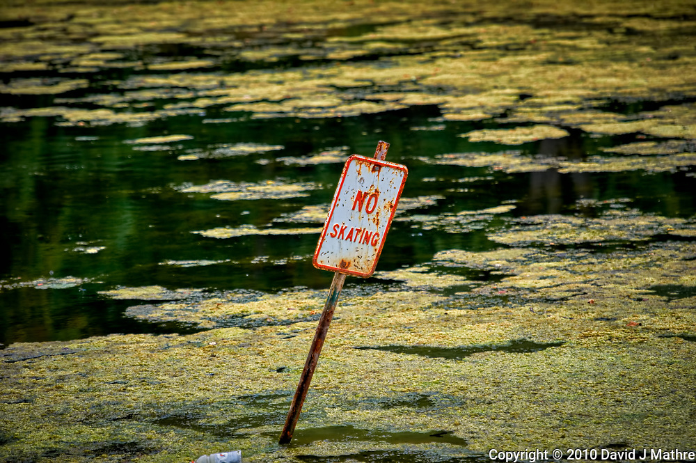 No Skating Sign in the Middle of the Pond at the Sourland Mountain Preserve. Summer Nature in New Jersey. Image taken with a Nikon D3s camera and 70-200 mm f/2.8 lens with a 2.0 TC-E teleconverter (ISO 200, 210 mm, f/5.6, 1/400 sec).