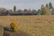 Autumn in the agricultural fields around Vavrišovo, Slovakia