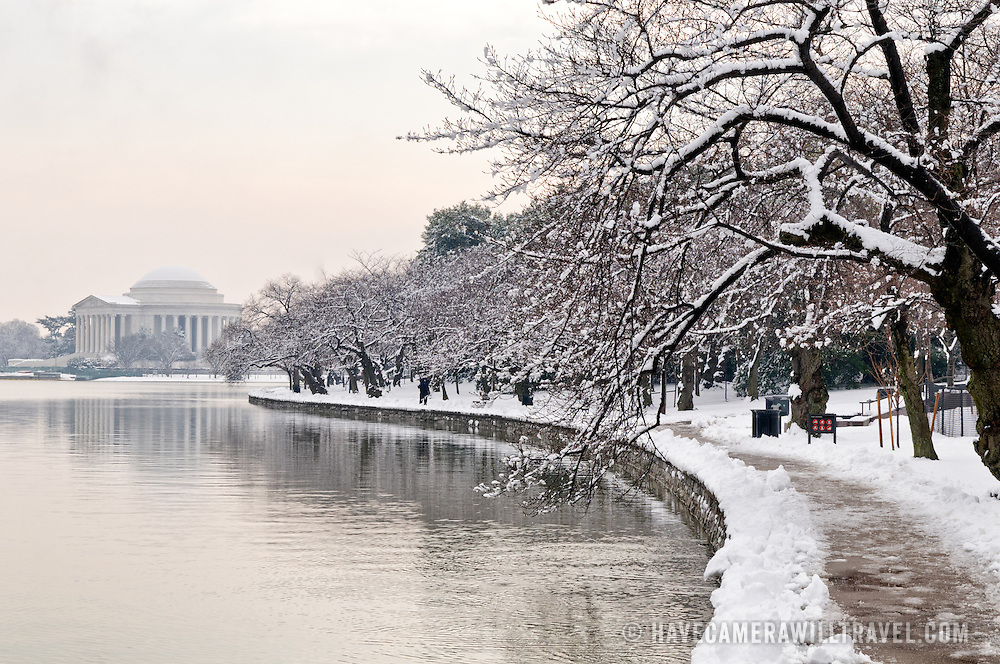 The famous cherry blossom trees lining the Tidal Basin are covered in fresh snow, with the Jefferson Memorial in the distance at left.
