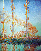 Claude Monet  (1840 – 1926) French impressionist  artist,  Three Poplar Trees in the Autumn 1891