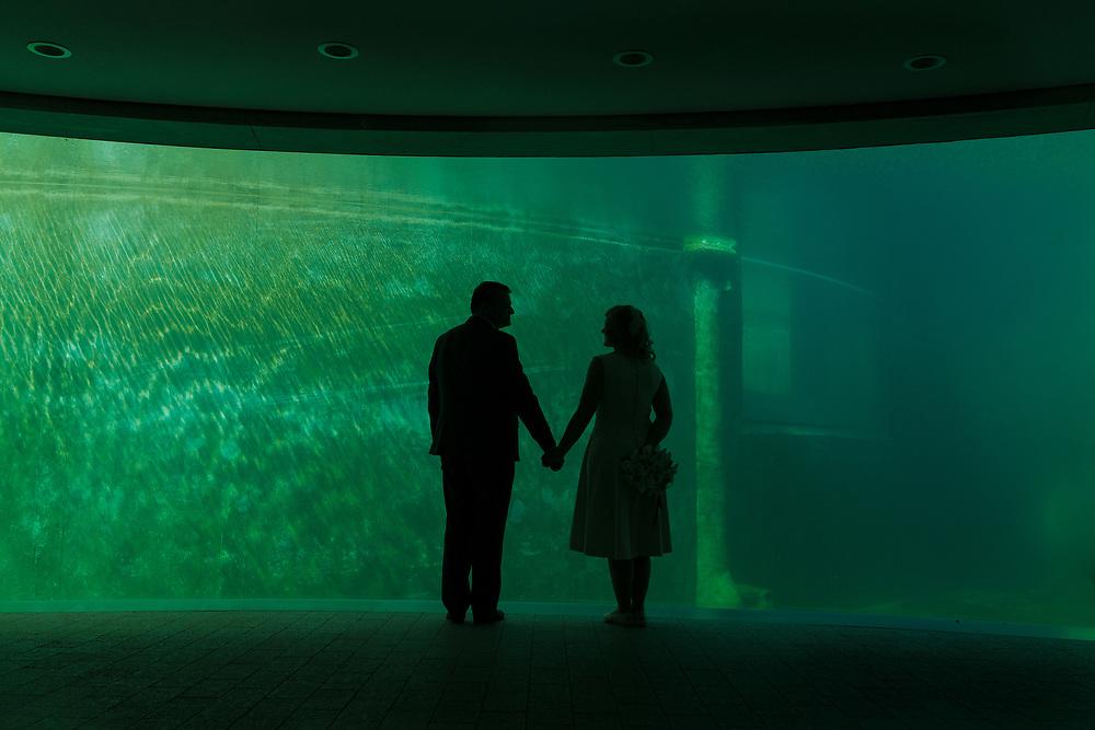 Loving couple stood in aquarium lighting setting in Copenhagen.