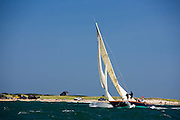 Kestrel racing at the Opera House Cup regatta.
