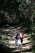 Bushwalkers in Australian Coastal Bushland