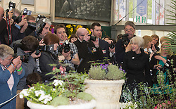 © Licensed to London News Pictures. 20/05/2013. London, England. Dame Helen Mirren is beleaguered by photographers. Celebrities at Press Day Monday of the RHS Chelsea Flower Show. Photo credit: Bettina Strenske/LNP