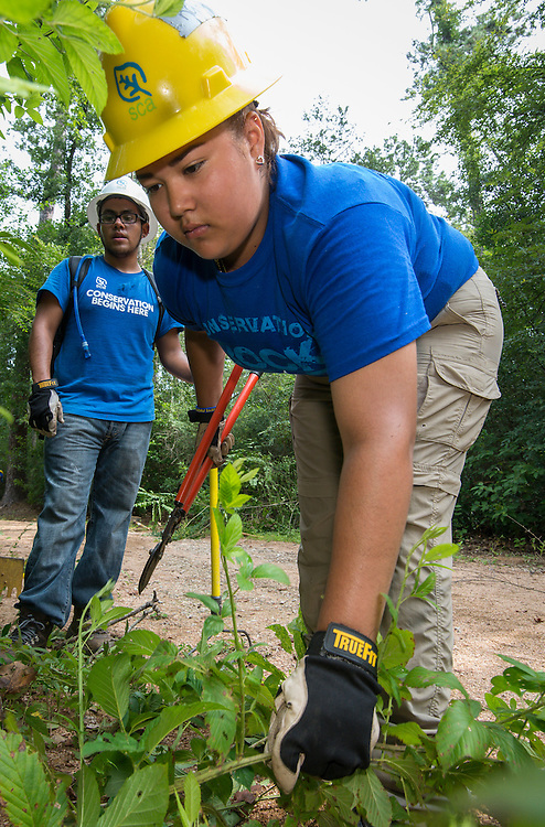 Milby High School senior Karina Sustaita works on a trail at the Houston Arboretum during the Student Conservation Association Houston (SCA) Summer Community Crew Program, July 21, 2014.
