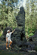 lava tree formed when hot lava surrounds a living tree, then cools and hardens, leaving a mold around the trunk when the lava drains away, Puna, Hawaii Island, USA