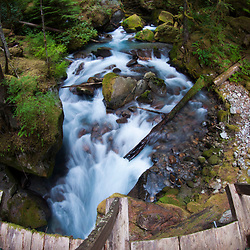 Fisheye View from Footbridge Over Ladder Creek, North Cascades National Park, Washington, US