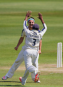 Jack A Brooks (Yorkshire CCC) celebrates taking the last (Durham County Cricket Club) wicket Chris Rushworth  to win the match,  LV County Championship Div 1 match between Durham County Cricket Club and Yorkshire County Cricket Club at the Emirates Durham ICG Ground, Chester-le-Street, United Kingdom on 1 July 2015. Photo by George Ledger.