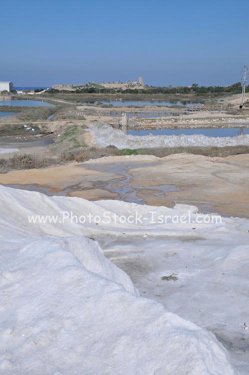 Israel, Coastal Plains, Atlit, Israel Salt Company est. 1922 produces salt from the Mediterranean sea