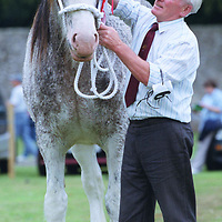 Kinross Show...12.8.2000.<br />