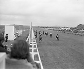 Irish Derby 1973