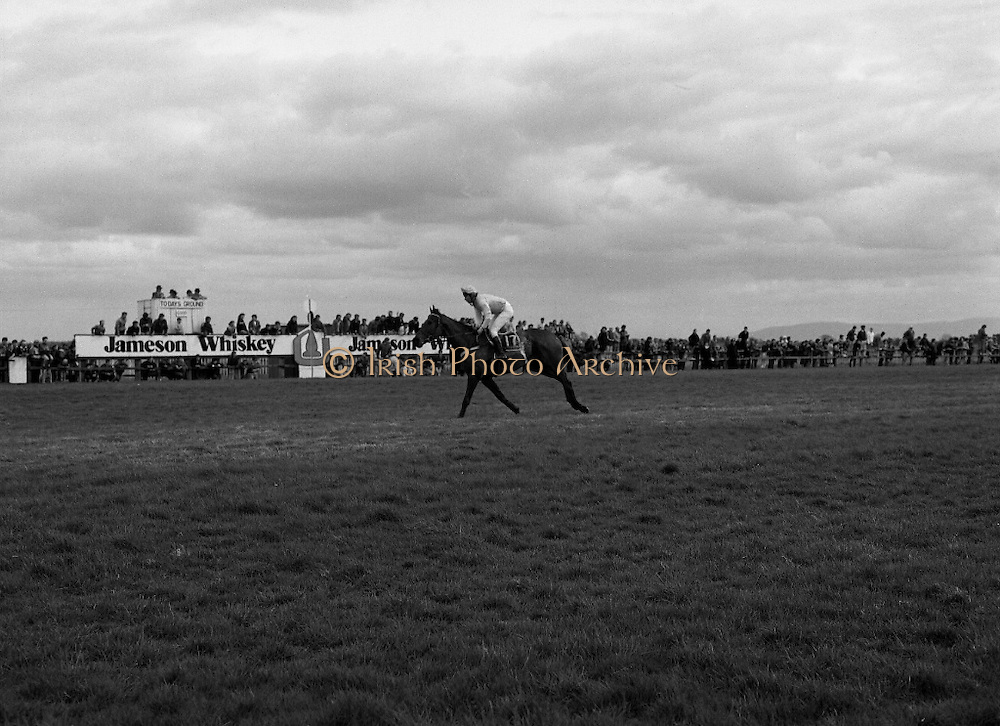 Irish Grand National At Fairyhouse.  (R54)..1987..20.04.1987..04.20.1987..20th April 1987..The Easter Racing Festival at Fairyhouse included the running of the Jameson sponsored Irish Grand National. Another featured race was the Jameson Gold Cup which was also run on Easter Monday...Picture shows 'Brittany Boy' ridden by Mr Tom Taffe,clear of the field,winning the Jameson Grand National at Fairyhouse. The horse is is owned by Mr Jimmy Glynn, Tuam, Co Galway and is trained by Mr Kelvin C Hitchmough,Monkstown, Cork.