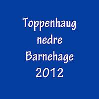 2012_Toppenhaug_nedre