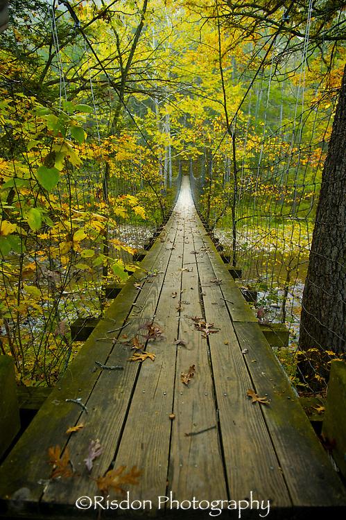 Suspension bridge in Autumn