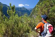 Ribeiro Bonito Levada do Rei / Madeira Island Photos, Landscape