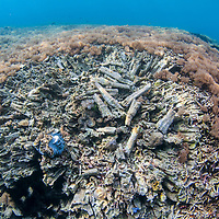 Damaged reef near Pom Pom island, Sabah, Borneo, East Malaysia, South East Asia