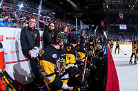 REGINA, SK - MAY 22: Hamilton Bulldogs' bench at the Brandt Centre on May 22, 2018 in Regina, Canada. (Photo by Marissa Baecker/CHL Images)