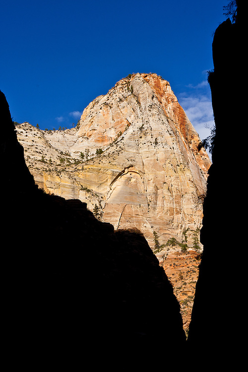 One of the most iconic mountains of Zion National Park is the Great White Throne. Zion's mountains make it one of the top rock climbing spots in the USA.