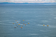 Kayaking in Grand Manan Channel<br /> Grand Manan Island<br /> New Brunswick<br /> Canada