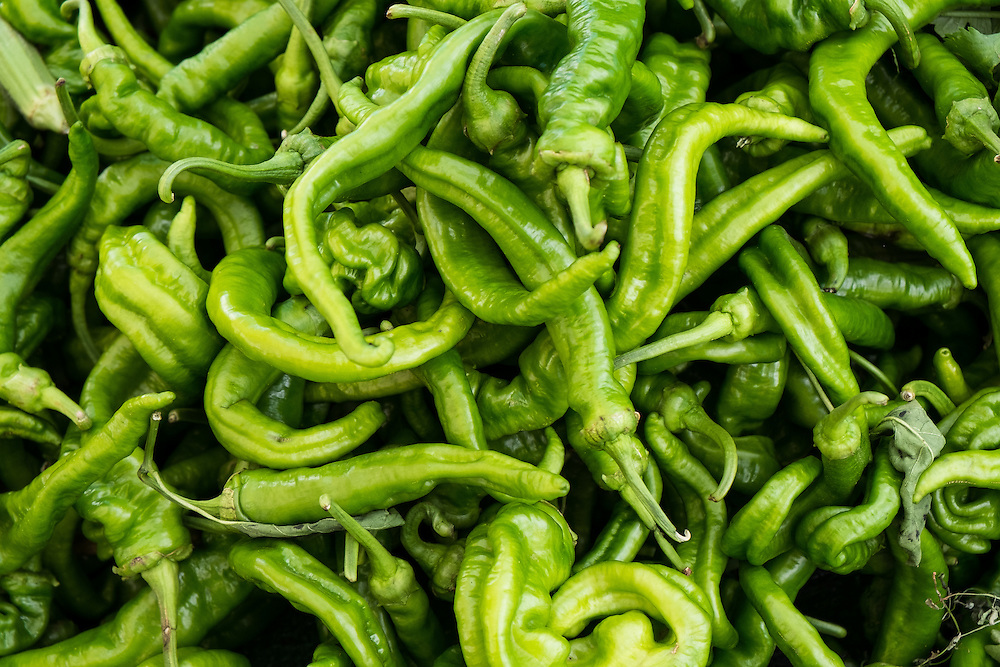 Italian Sweet Peppers at the Farmers Market | June 30, 2013