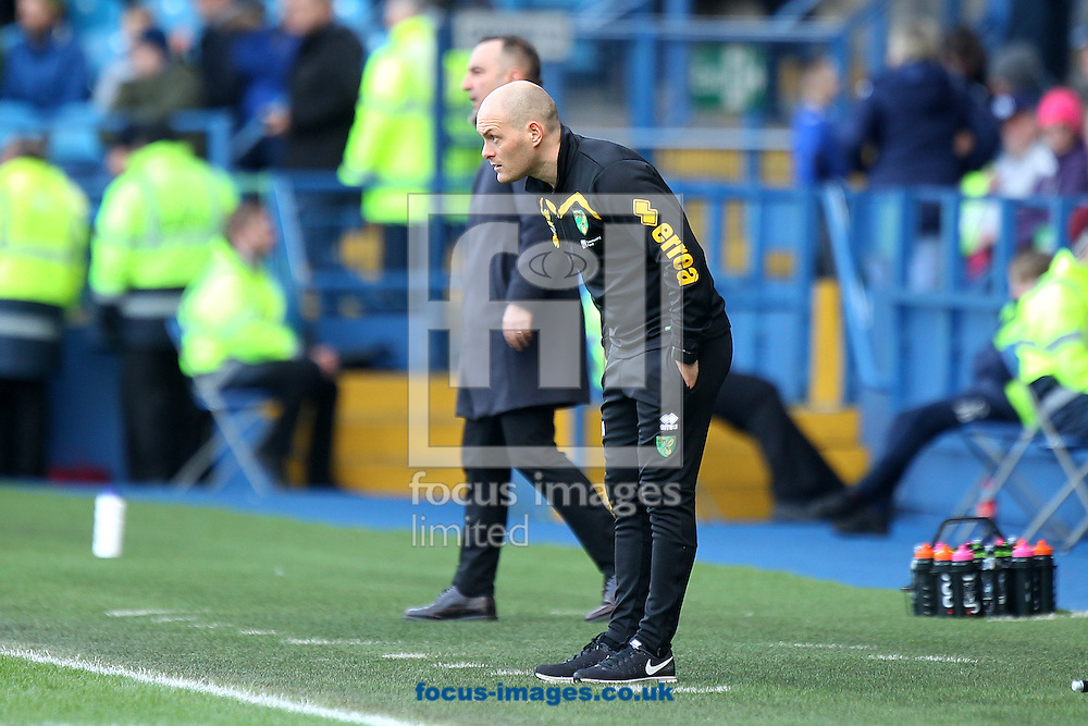 Norwich Manager Alex Neil during the Sky Bet Championship match at Hillsborough, Sheffield<br /> Picture by Paul Chesterton/Focus Images Ltd +44 7904 640267<br /> 04/03/2017