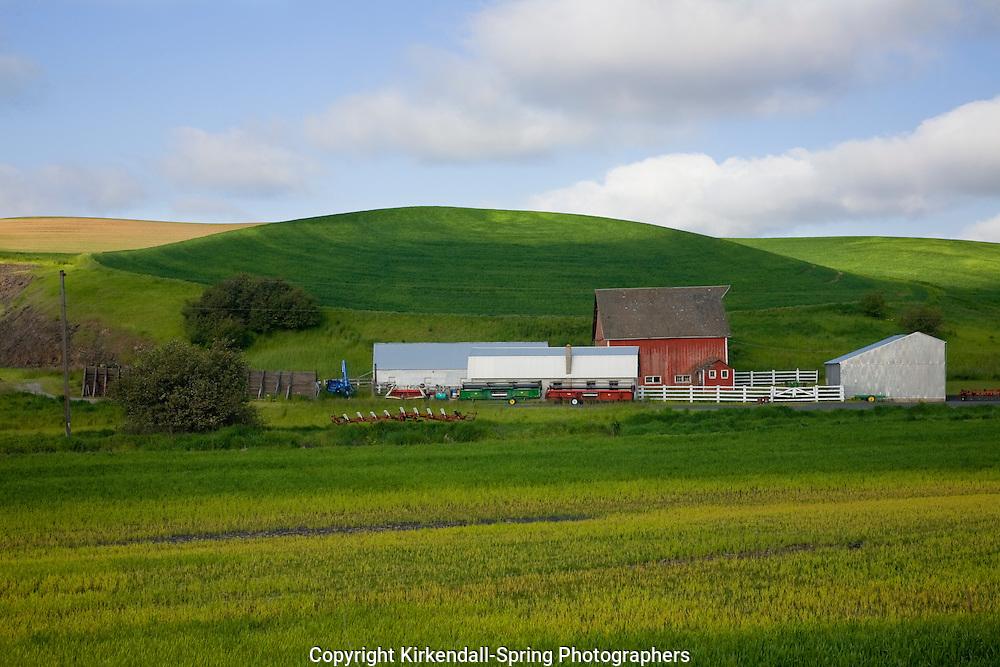 WA05495-00...WASHINGTON - Barn and farm fields in the Palouse area.