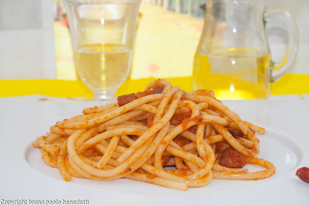 amatriciana bucatini side view close up on white dish, italian traditional food