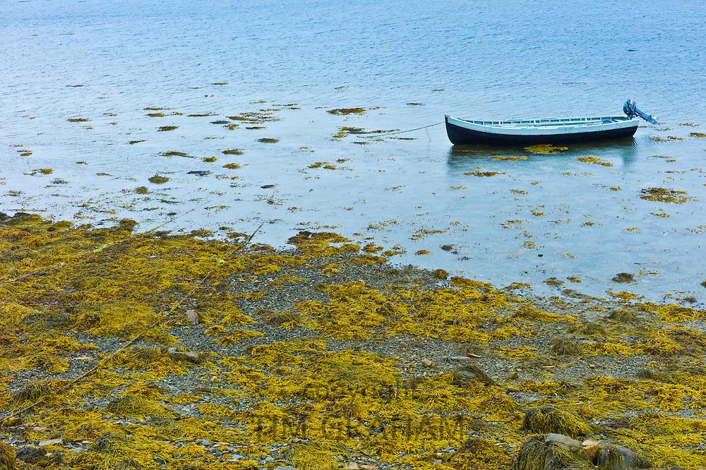 Curragh fishing boat at Fahy Pier near Cleggan, Connemara, County Galway, West Coast of Ireland